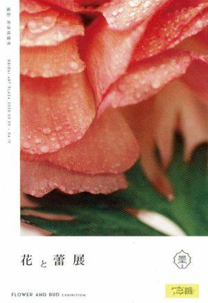 2020.3.20(金)〜4.19(日)花と蕾展 添田亜希子